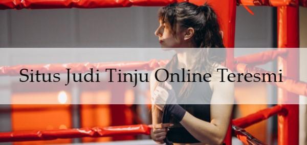 Situs Judi Tinju Online Teresmi